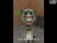 会说话的汤姆猫——老男孩