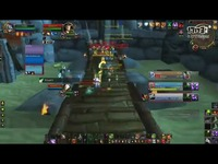 著名毁灭术Cobrak:法术萨 3v3竞技场视频