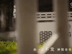 敖程勇-青山-MV