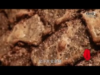 KK直播 《匠人与匠心》第一期:重生的泥土