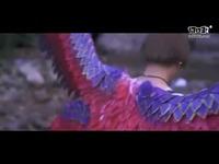 《龙之谷》乙帅红龙COS拍摄花絮放送!