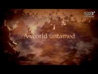 《神佑》全球版宣传视频