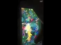 手机上的捕鱼游戏的辅助画面集锦