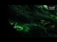 只有梦想无法交换 《三国大亨》概念视频首发