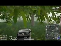 我的大狒狒驾驶员~你这么把车开到悬崖下面去了!